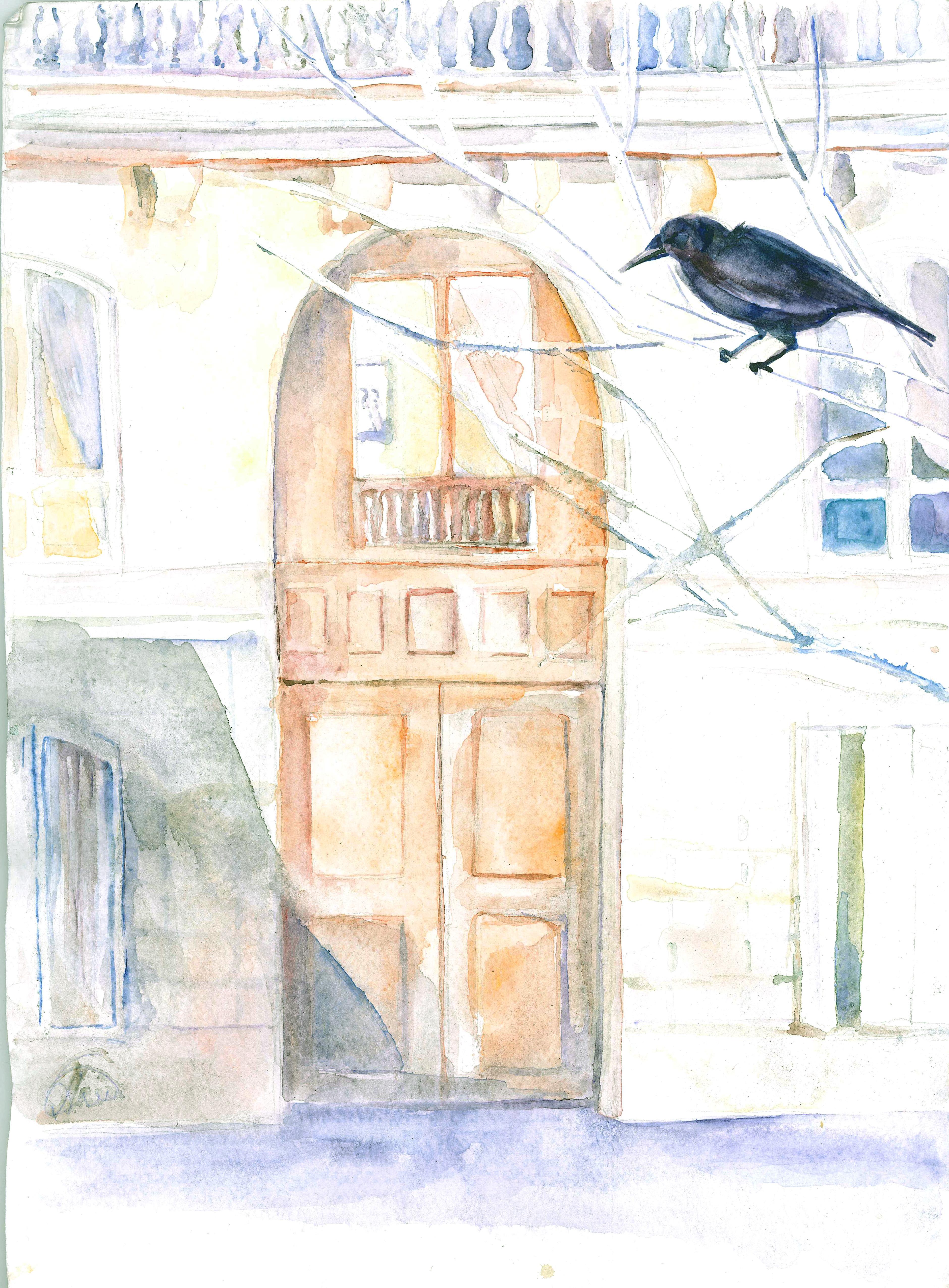 crow-shadows1